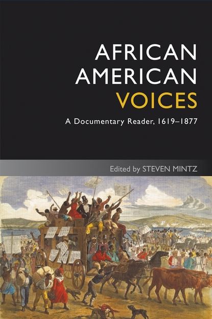 Steven Mintz African American Voices. A Documentary Reader, 1619-1877 alessandra de lyte surrender to slavery
