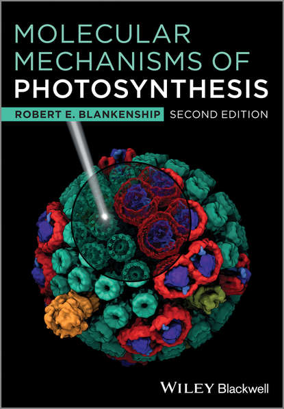 Robert Blankenship E. Molecular Mechanisms of Photosynthesis reza razeghifard natural and artificial photosynthesis