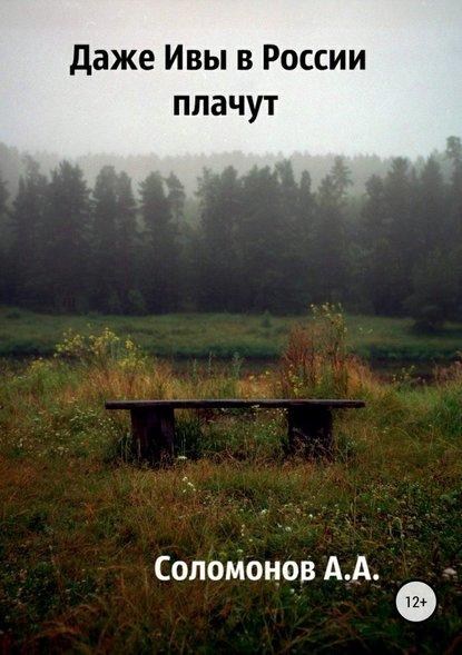 Арсений Соломонов Даже Ивы в России плачут недорого