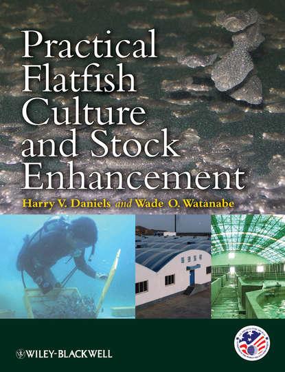 Фото - Watanabe Wade O. Practical Flatfish Culture and Stock Enhancement hot in stock km44c1000ctr 6