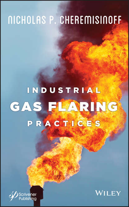 Фото - Nicholas P. Cheremisinoff Industrial Gas Flaring Practices g v chilingar fundamentals of the petrophysics of oil and gas reservoirs