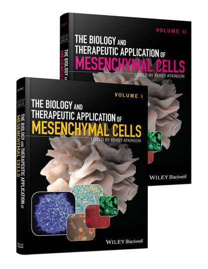 Группа авторов The Biology and Therapeutic Application of Mesenchymal Cells недорого