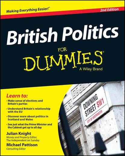 Julian Knight British Politics For Dummies nick totton psychotherapy and politics