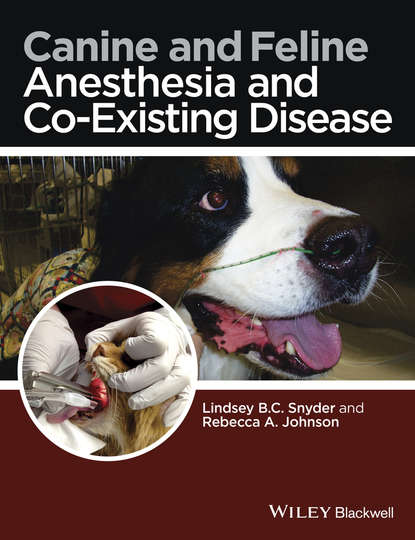 Группа авторов Canine and Feline Anesthesia and Co-Existing Disease lynelle r johnson clinical canine and feline respiratory medicine