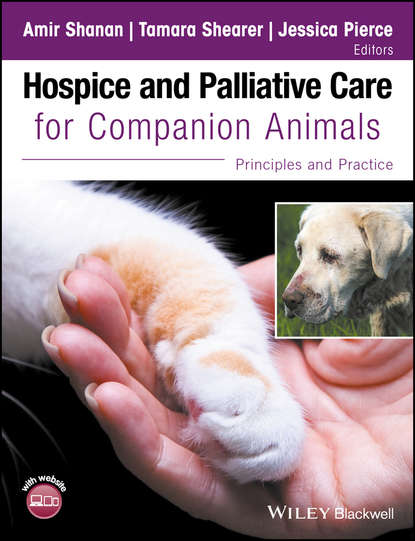 Hospice and Palliative Care for Companion Animals