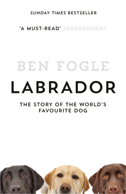 Ben Fogle Labrador: The Story of the World's Favourite Dog unknown the moravians in labrador