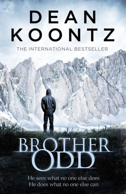 Dean Koontz Brother Odd dean koontz odd thomas series books 1 5