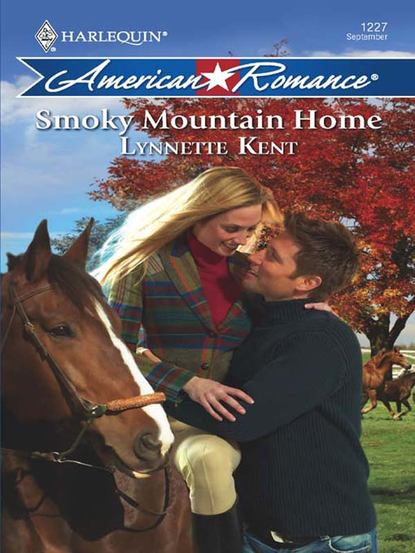 Lynnette Kent Smoky Mountain Home ruth ann lambe the man of the cloth