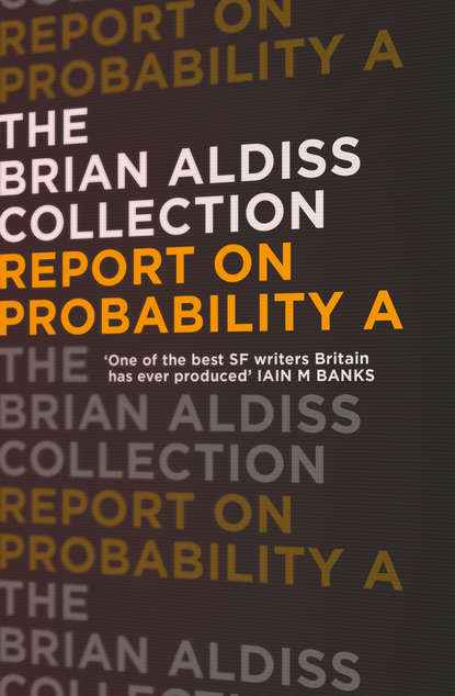 Фото - Brian Aldiss Report on Probability A mary domski discourse on a new method