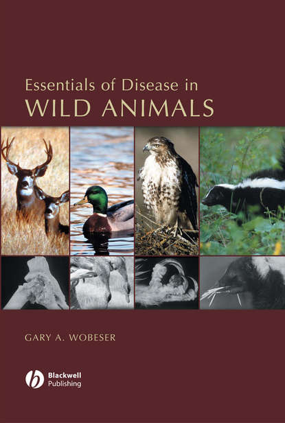 Группа авторов Essentials of Disease in Wild Animals depression in neurologic disease