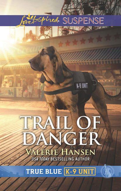 Valerie Hansen Trail Of Danger valerie hansen the troublesome angel