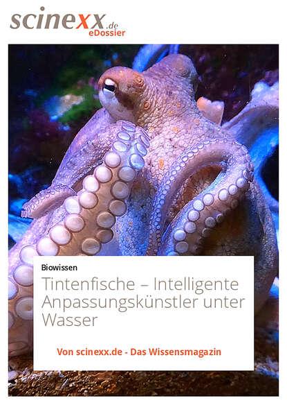 Dieter Lohmann Tintenfische недорого