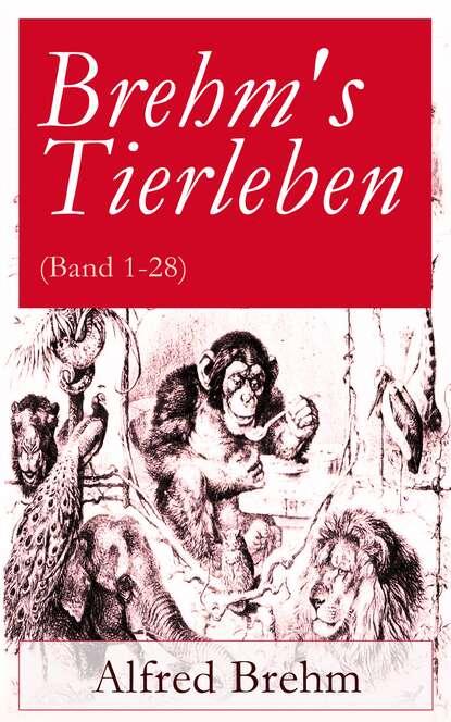 Brehm Alfred Edmund Brehm's Tierleben (Band 1-28) brehm alfred edmund het leven der dieren deel 2 hoofdstuk 04 de hoendervogels