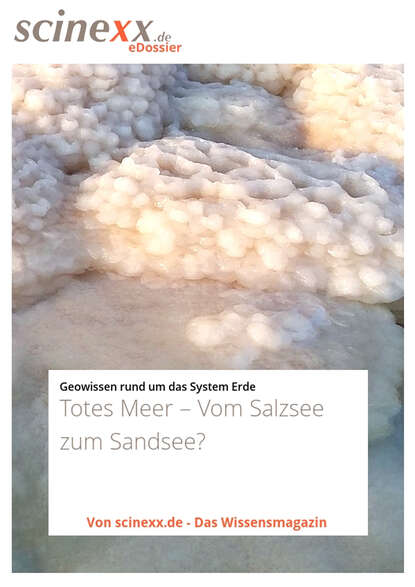 Dieter Lohmann Totes Meer недорого