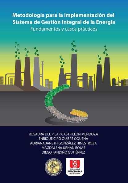 Rosaura del Pilar Castrillón Mendoza Metodología para la implementación del sistema de gestión integral de la energía pilar portocarrero la otra cuestión de piel