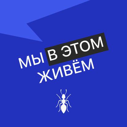 Творческий коллектив Mojomedia Выпуск № 36 s05 — Дивандер