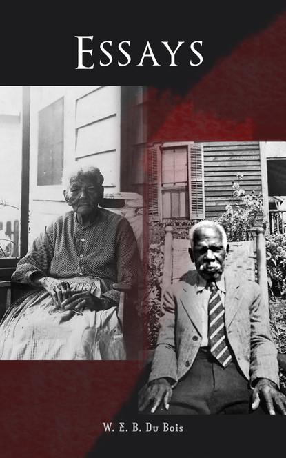 W. E. B. Du Bois Essays w e b du bois du bois the gift of black folk to america