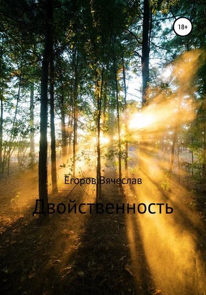 Фото - Вячеслав Анатольевич Егоров Двойственность владимир шилов сон разума