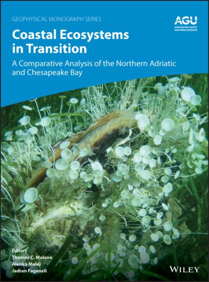 Группа авторов Coastal Ecosystems in Transition группа авторов transition metals in supramolecular chemistry