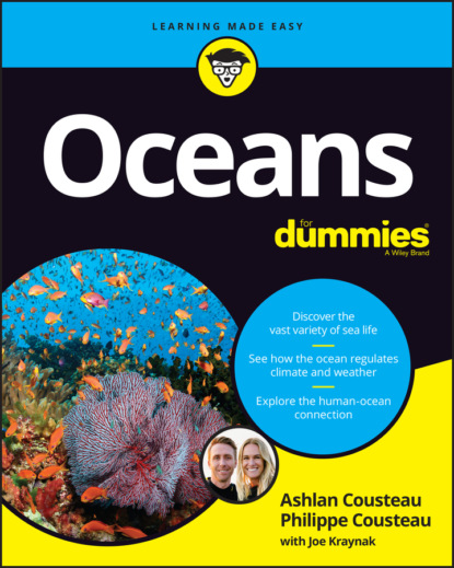 Oceans For Dummies