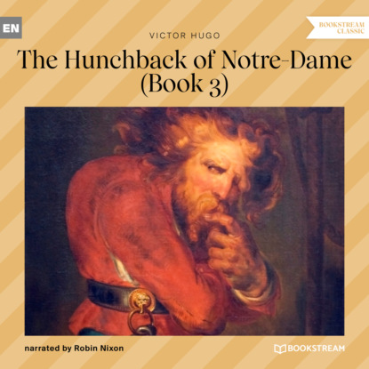 The Hunchback of Notre-Dame, Book 3 (Unabridged)