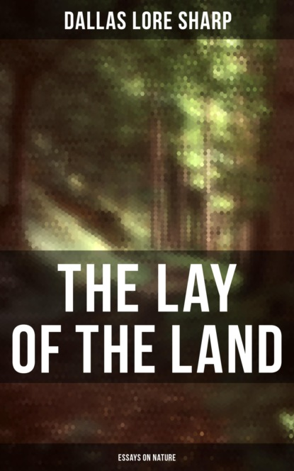 Dallas Lore Sharp The Lay of the Land: Essays on Nature недорого