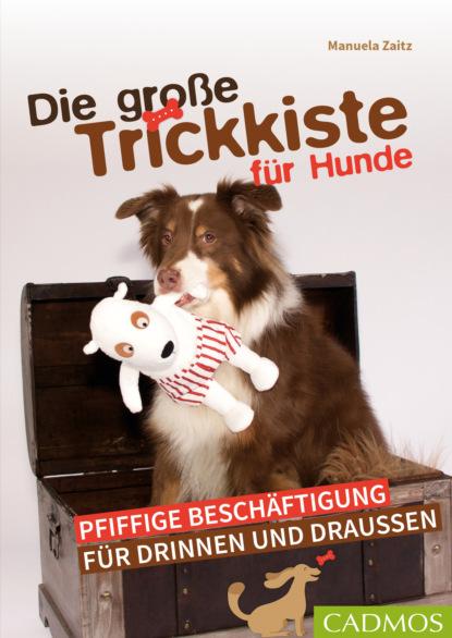 sebastian schroer ipad tipps und tricks für dummies Manuela Zaitz Die große Trickkiste für Hunde