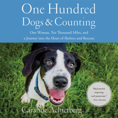 Cara Sue Achterberg One Hundred Dogs and Counting - One Woman, Ten Thousand Miles, and A Journey into the Heart of Shelters and Rescues (Unabridged) mark spano sicily land of love and strife a filmmaker s journey unabridged