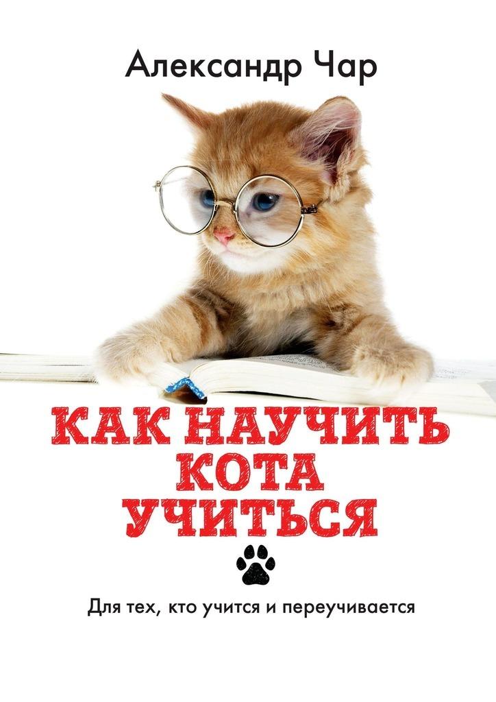 Как научить кота учиться. Для тех, кто учится и переучивается