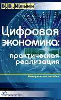 Цифровая экономика: практическая реализация