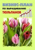 Бизнес-план по выращиванию тюльпанов