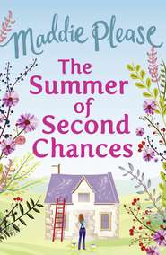 The Summer of Second Chances: The laugh-out-loud romantic comedy