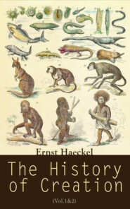 The History of Creation (Vol.1&2)