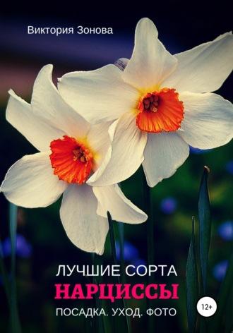 Нарциссы. Лучшие сорта