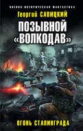 Позывной «Волкодав». Огонь Сталинграда