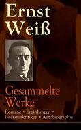 Gesammelte Werke: Romane + Erzählungen + Literaturkritiken + Autobiographie