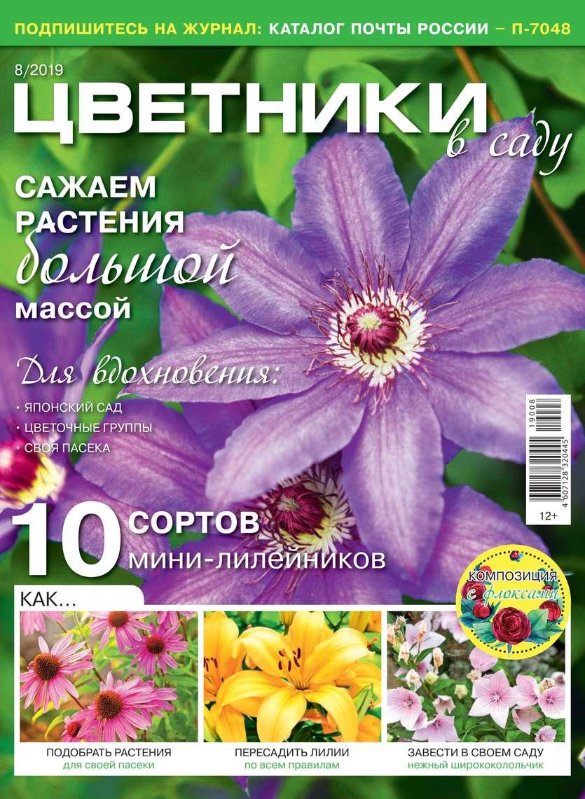 Цветники в Саду 08-2019
