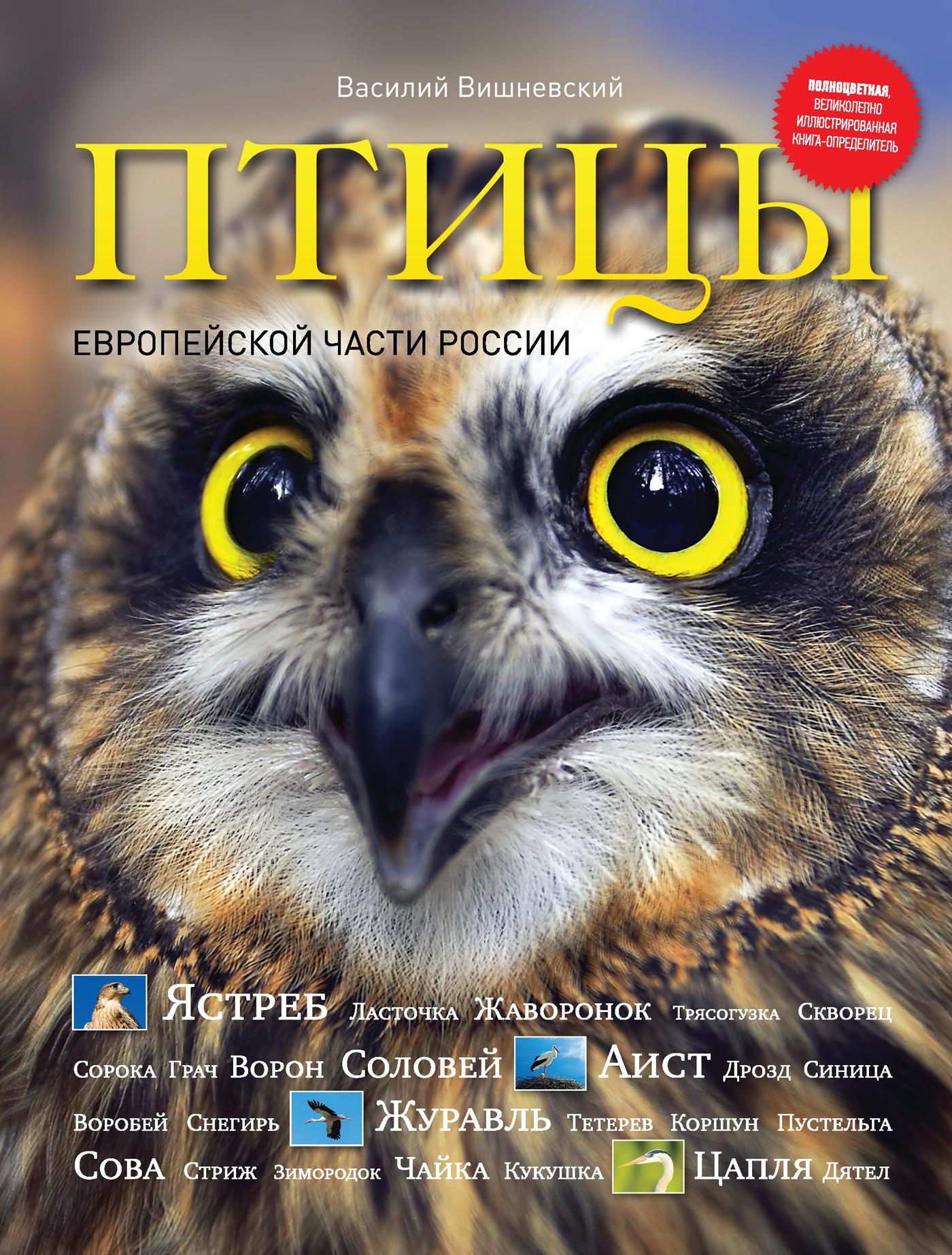 Птицы Европейской части России
