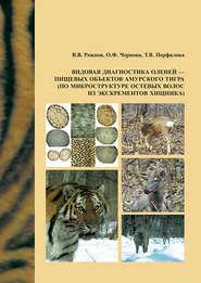 Видовая диагностика оленей – пищевых объектов амурского тигра (по микроструктуре остевых волос из экскрементов хищника)