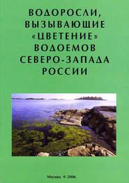 Водоросли, вызывающие «цветение» водоемов Северо-Запада России