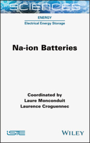 Na-ion Batteries