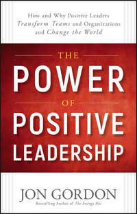 The Power of Positive Leadership. How and Why Positive Leaders Transform Teams and Organizations and Change the World