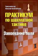 Практикум по шахматной тактике. Завоевание поля