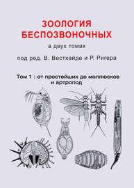 Зоология беспозвоночных. Том 1. От простейших до моллюсков и артропод